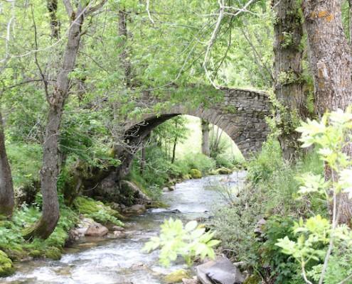 Nacimiento del Río Sil (Cueta de Babia_Cacabillos)